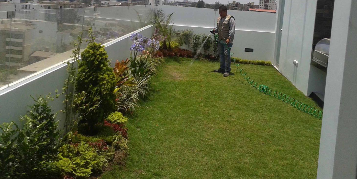 clasificacion-de-techos-verdes